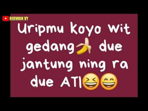 "Status WA Lucu ""Bahasa Jawa"" #part01"