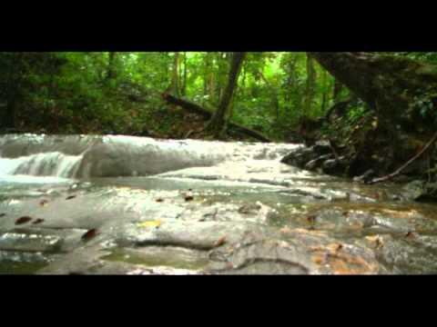 7 Altares (Izabal) - Descubre Guatemala - Turismo Tv.
