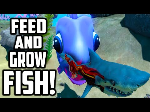 Feed And Grow Fish Mega Little Purple Fish Funny Moments