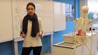 Download Lagu ALEV Öğrencileri IB Diploma Programını Anlatıyor Gratis STAFABAND