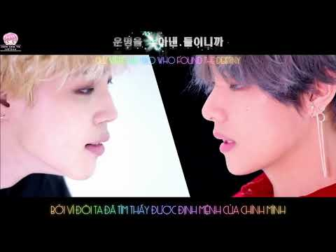 [KARA/ENGSUB/VIETSUB] BTS 방탄소년단 'DNA' Official MV