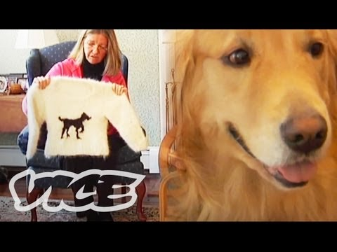 making-dog-hair-sweaters.html