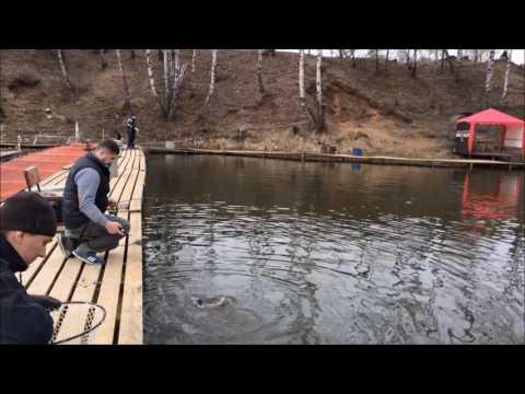 рыбалка на форель с проживанием