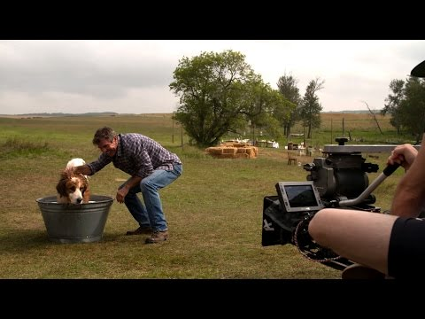 'A Dog's Purpose' Behind The Scenes