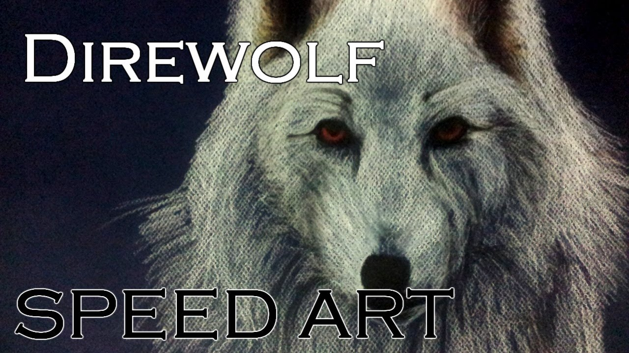 White Direwolf Game Of Thrones Speed Drawing Hd