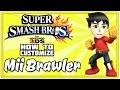 Super Smash Bros For 3DS: How To Customize A Mii Brawler Tutorial + Gameplay!
