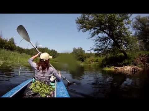 битюг рыбалка видео