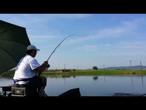 Pescuit la feeder-Maggot Feeder(cosulet viermi)