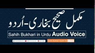 Sahih Bukhari Hadith No 313