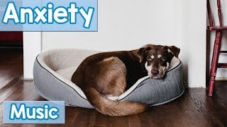 The BEST Relaxing Dog Music for Dogs with Anxiety! Soothe Your Dogs Anxiety with this Natural Remedy