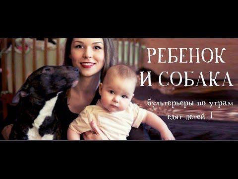 Ребенок и собака в доме - совместно с Naska Ananaska