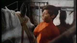 Heintje - Mamatschi schenk' mir ein Pferdchen 1969