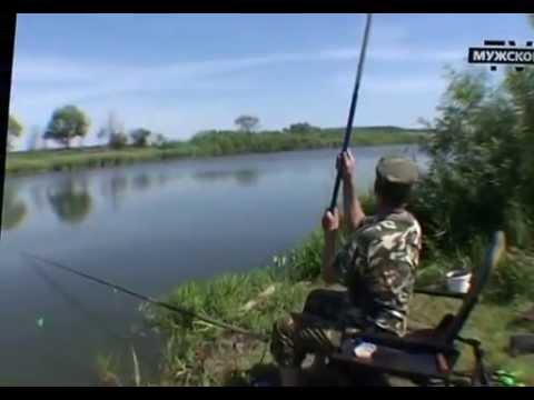 Карп в Ляхово. Сага о рыбалке 1