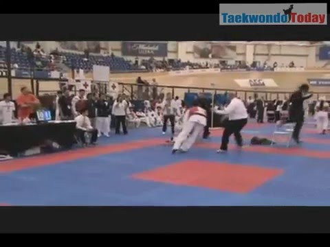 Taekwondo WTF Best Knockouts 2012