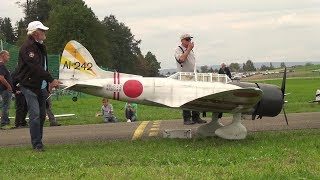 HAVE YOU EVER SEEN A BIGGER RC AICHI D3A1 WARBIRD???