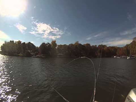 Lake Norman, Mid day fishing for blue cats. November 8, 2014