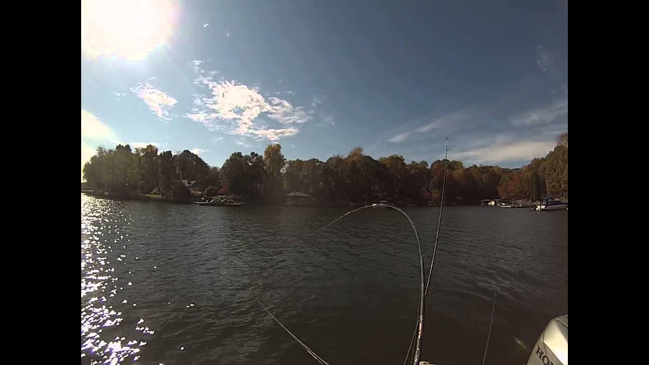Lake Norman Mid Day Fishing For Blue Cats November 8