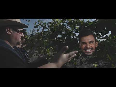 Polgár Peti - Bulizzatok magyarok! (Offipixál videó)
