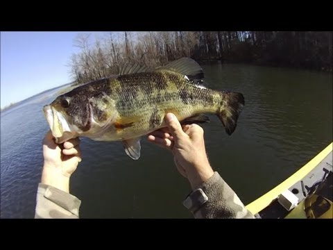 Bass Fishing Toledo Bend Feb 17 2013