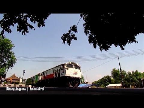 Eksekutif Taksaka Pagi Spesial Kereta Wisata Toraja Melintas di PJL Krucuk Cirebon