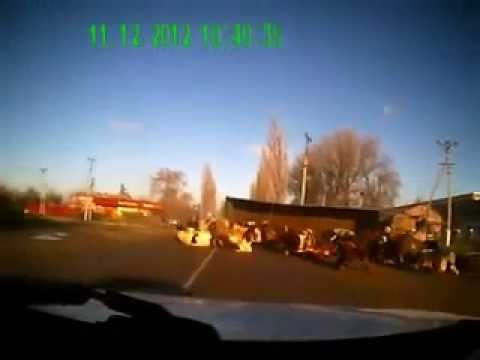 Коровы высыпались из грузовика