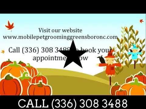 Mobile Pet Grooming Greensboro Nc   Mobile Dog Grooming Greensboro Nc   Dog Groomers Greensboro Nc video