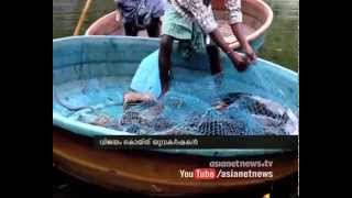 Fish farming in unused stone quarry success for youngsters in Iritty