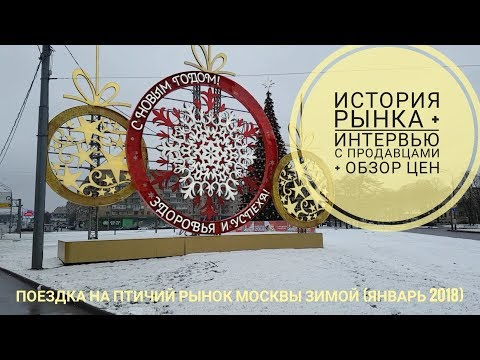 Поездка на Птичий рынок Москвы зимой (январь 2018)