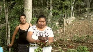Huertos Familiares: combatiendo el Hambre