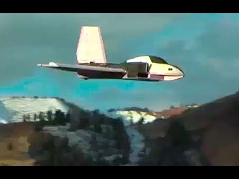 HUGE Foam RC Delta Jet