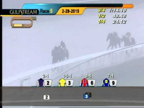 Gulfstream Park Race 5 Herecomesthebride Stakes (g3)   February 28, 2015 video