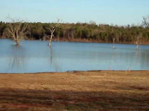 Flat Creek Public Fishing Area - Perry, GA