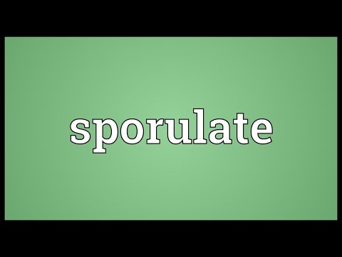 Header of sporulate
