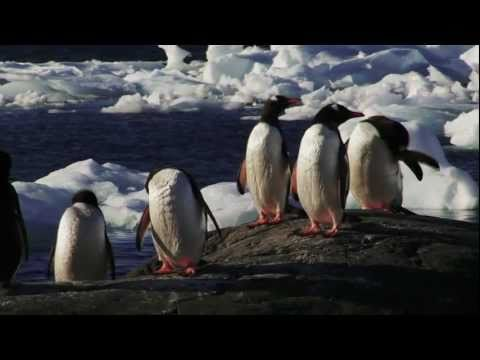 The White Contnent: Climate Change and Antarctica