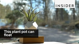 This plant pot can float