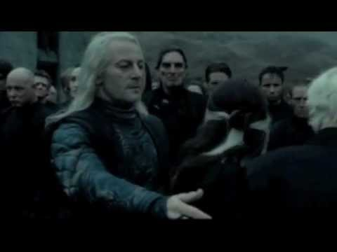 The Malfoy Family- So Cold