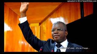AUDIO: Haiti Electricite - Intervention Senateur RONY Celestin nan Dosye Kontra Kouran ki tap diskite nan Palman an