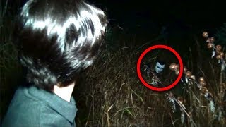 Download Lagu 11 Scary Forest Encounters Caught By YouTubers Gratis STAFABAND