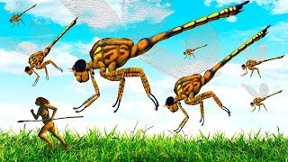 Así es cómo se veían los insectos hace 300 millones de años