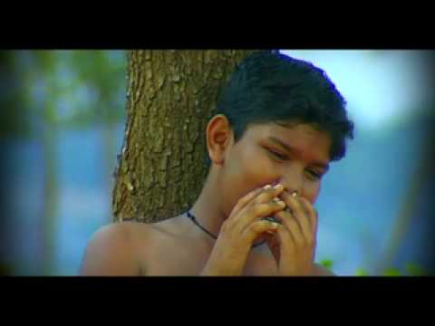 Vellikolusitta Vennilavu video