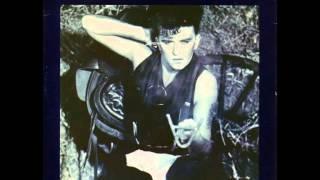 Watch Visage Pleasure Boys video