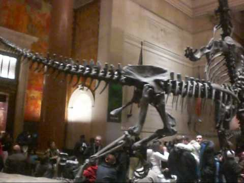 The American Museum of Natural History