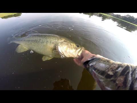 Bass fishing (In the Fall) GoPro Hero3+ 720p HD