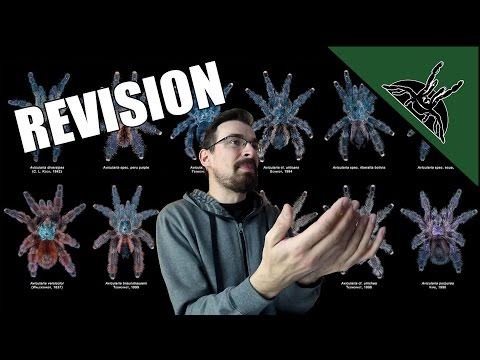 You no longer have an AVICULARIA | GENUS REVISION