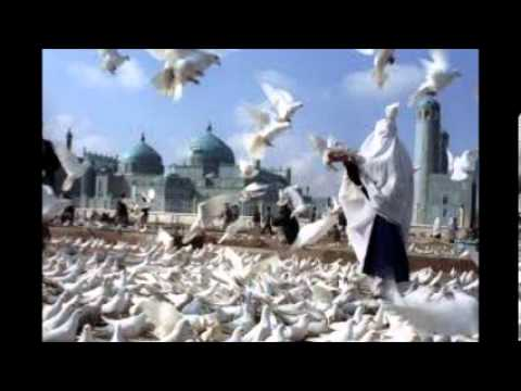 Mir Fakhruddin Agha - Old video