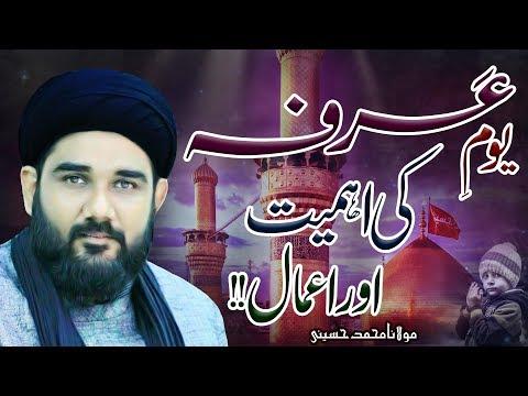 Yaum-E-Arafa Ki Ahmiyyat Aur A'amaal !! | Maulana Muhammad Hussaini | 4K