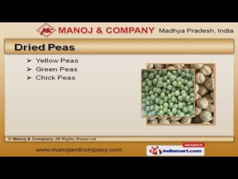 Pulses & Beans by Manoj & Company, Indore