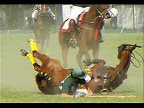 Intense Horse Falls