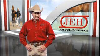 JEH Stallion Station-A leader in AQHA racing breeding