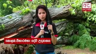 Extreme weather wreaks havoc across Colombo and surrounding areas